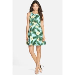 CeCe by Cynthia Steffe Rosie Fit & Flare Dress
